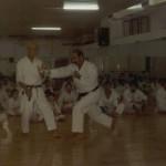 Stage a Genova con Prof. Suzuki: tecnica di schivata su attacco di gyaku tsuki.