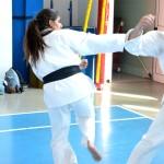 Mario Mozzato (2° Dan) e Michela Verde (2° Dan) eseguono il 2° kihon kumite.