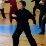 Tecnica Lan Que Wei (afferrare la coda del passero).