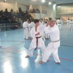 il M° Verde  spiega  con Matteo BENZI il bunkai (applicazione semplice)  di un passaggio del kata Pinan Yodan.