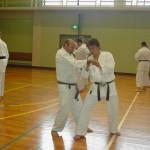 Iwakuni. Allenamento con delegazione giapponese. 5° Kihon kumite.