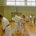 Iwakuni. Michela   prova il 5° kihon kumite con  Simon Coope.