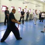 Il M° VERDE    spiega tecnica di spada taichi.