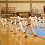 Il  M° RAVERA (primo piano a sx)  dirige il kihon; sullo sfondo il M° VERDE (senza karategi  e col tutore alla spalla operata)  fa meglio che può....