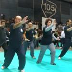 Tecnica di Lou Xi Ao Bu (spazzare sfiorando il ginocchio).