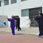Forma 16 movimenti di spada.