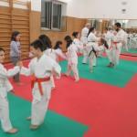 Piccoli karateka  in allenamento.