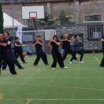 """Esibizione di Taiji Quan  del C.D.O. SU HA RI KAN (forma 8 mani nude) al """"Che Festival""""   di Music for Peace."""